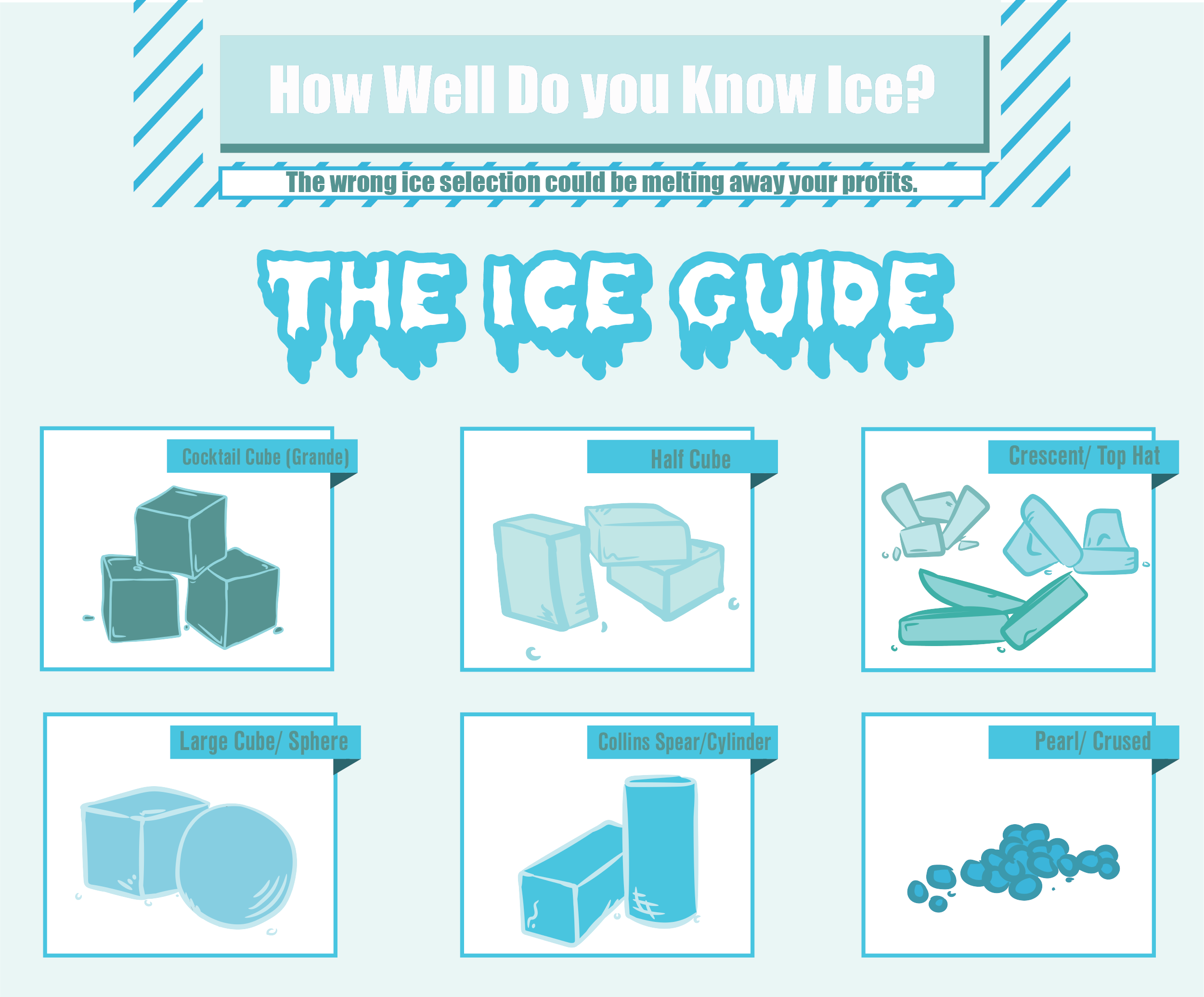 The Ice Guide